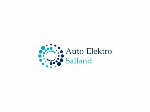 Auto Elektro Salland